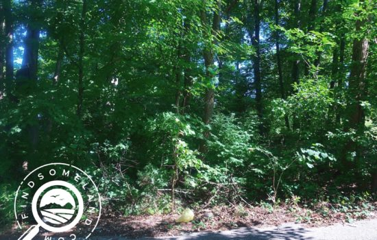 Wooded 0.276 acre building lot in Georgetown, IN – 15 minutes to Louisville, KY