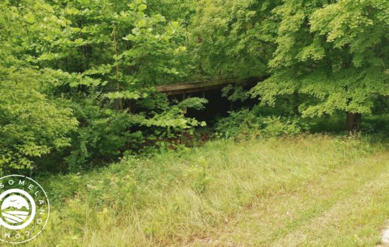 Nearly 3 wooded acres with all city utilities in French Lick!