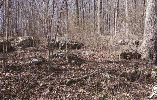 1.37 acre wooded parcel with water and electricity in Lawrence County, IN