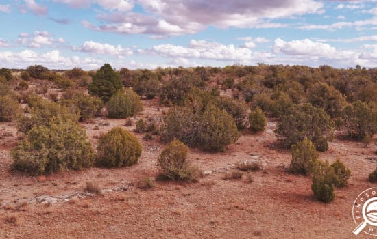 40.1-Acre Farming Property in Peach Springs, AZ! Only $555/Mo., Easy Financing!