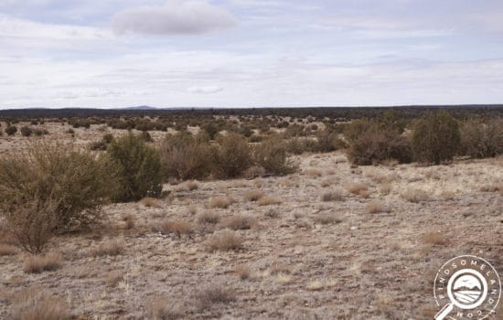 Build on this Beautiful 40-Acre Property in Yavapai County, AZ! Only $511/Month, Owner Financing!